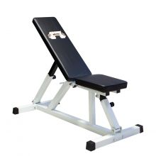 Positions Adjustable Fitness Workout Bench DW2161